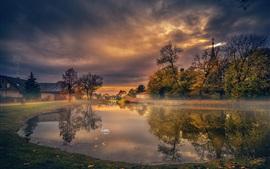 Morning, lake, swan, village, trees, clouds, fog