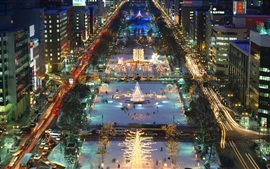 Preview wallpaper Odori Park, Hokkaido island, Sapporo, Japan, night, lights