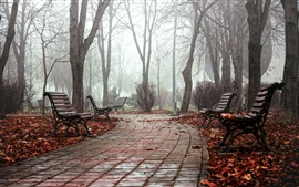 Preview wallpaper Park, bench, path, trees, fog, morning