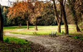 Preview wallpaper Park, trees, grass, bench, autumn, HDR style