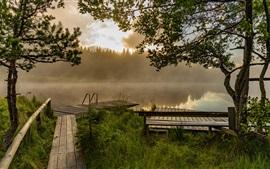 Preview wallpaper Pier, lake, trees, fog, dawn