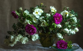 Preview wallpaper Purple and white roses, vase, still life