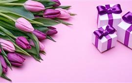 Flores y regalos de tulipanes morados