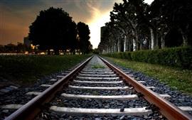Ferrocarril, árboles, hierba, puesta del sol
