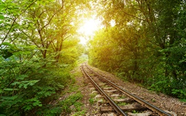 Preview wallpaper Railway, trees, green, sun, glare