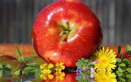 Maçã e flores vermelhas, frutas