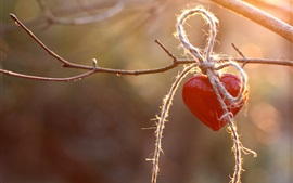 Preview wallpaper Red love heart, rope, twigs
