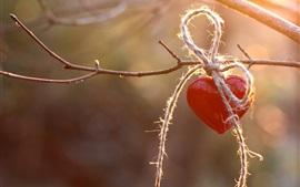 Corazón de amor rojo, cuerda, ramitas