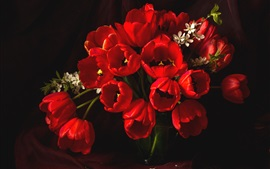 Red tulips, vase, darkness