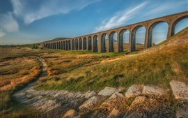 Ribblehead Viaduct, arch, path, grass, autumn, England