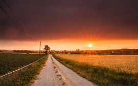 壁紙のプレビュー 道路、畑、日没、住宅