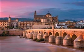 Preview wallpaper Roman bridge, river, Spain