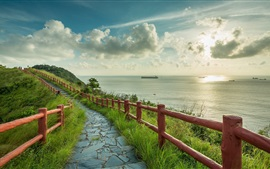 Preview wallpaper Sea, path, fence, grass, ships