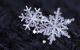 Preview wallpaper Snowflakes, ice crystals, winter