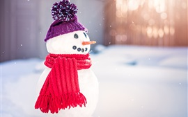 Preview wallpaper Snowman, scarf, hat, snow, winter, New Year