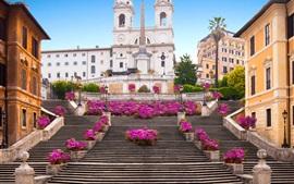 壁紙のプレビュー スペイン階段、ローマ、都市、花、建物、イタリア