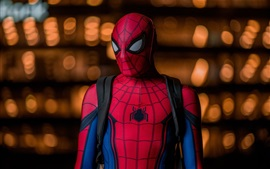 Preview wallpaper Spider-Man at night, superhero