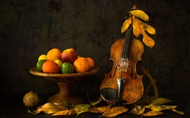 Preview wallpaper Still life, violin, fruit, apple, orange, lemon
