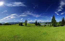 Verano, hierba verde, árboles, lago, cielo azul