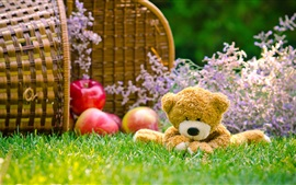 Preview wallpaper Teddy bear, grass, apples, basket