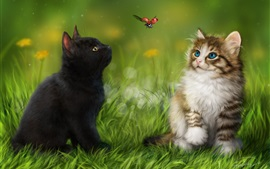 Two cats in the grass look at ladybug flight