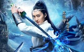 Aperçu fond d'écran Wang Likun, univers martial