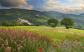 Wildflowers, mountains, town, slope, houses