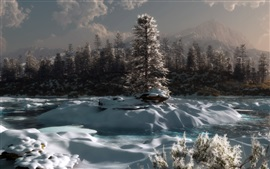 Preview wallpaper Winter, trees, snow, morning