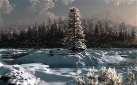 Inverno, árvores, neve, manhã