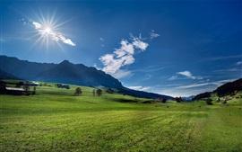 Áustria, Alpes, montanhas, prado, árvores, sol