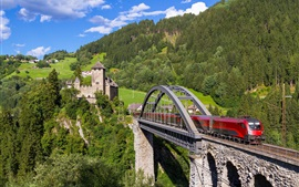 Preview wallpaper Austria, Tyrol, Weisberg Castle, forest, train