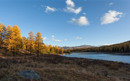 Preview wallpaper Autumn, lake, trees, Altay