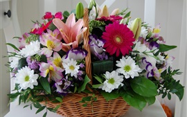 Cesta, flores coloridas, crisântemo, gerbera, lírio