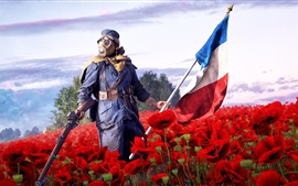 Preview wallpaper Battlefield 1, EA games, soldier, rifle, red poppies