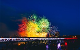Preview wallpaper Beautiful colorful fireworks, city night, bridge, illumination