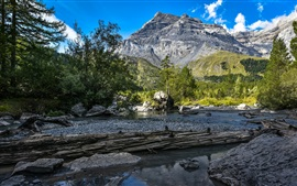 Preview wallpaper Bernese Alps, forest, river, stones