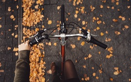 Preview wallpaper Bike, top view, leaves, speed