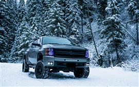 Preview wallpaper Chevrolet pickup in winter, snow, trees