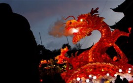 Preview wallpaper China, dragon, lights, holiday, Shanghai