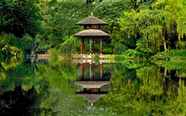 China, gazebo, pond, park, trees, green