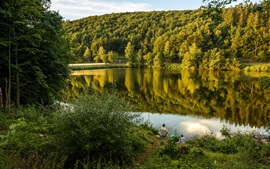 Germany, lake Biggesee, forest