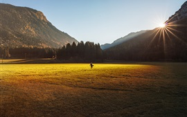 Grass, lawn, trees, mountains, sun rays, girl look back