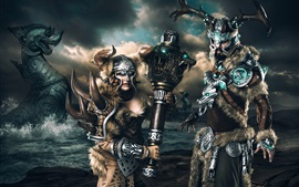 Preview wallpaper Guild Wars, Vikings, art picture