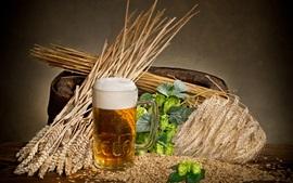 Aperçu fond d'écran Houblon, bière, tasse en verre, mousse