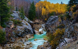 Preview wallpaper Independence Pass, Rocky Mountains, Colorado, USA, trees, river, stones, autumn