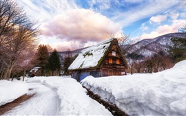 Preview wallpaper Japan, village, house, thick snow, winter, trees, clouds