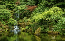 Preview wallpaper Japanese Gardens, trees, waterfall, Oregon, Portland, USA