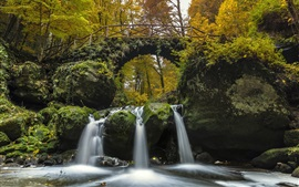 Preview wallpaper Luxembourg, Little Switzerland, waterfall, river, bridge, moss, trees