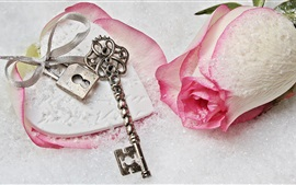 Preview wallpaper Pink rose, snow, key, lock