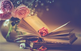 Pink roses and books, romantic